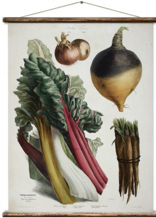 Wall Hanging by Erstwhile | Botanicals | Album Vilmorin